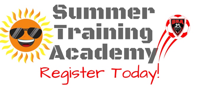 Summer Training Academy